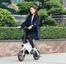 F – wheel DYU Electric Bike