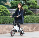 F – wheel DYU Electric Bike
